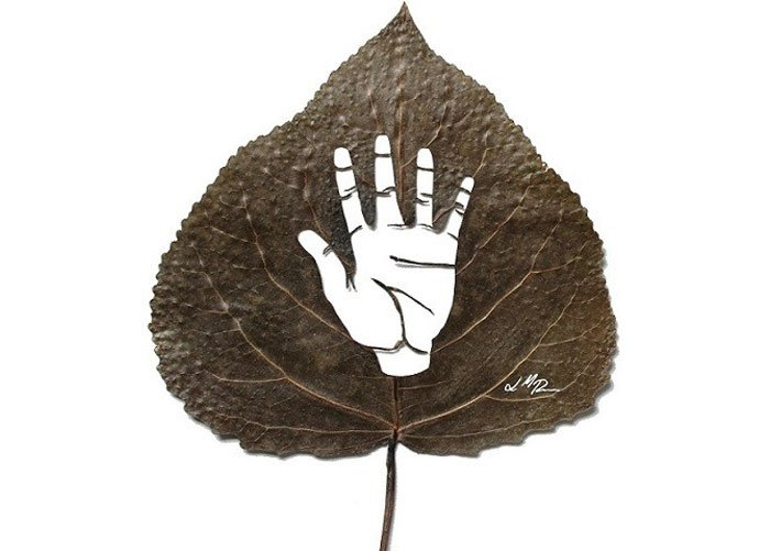 leafart-lcdesign16