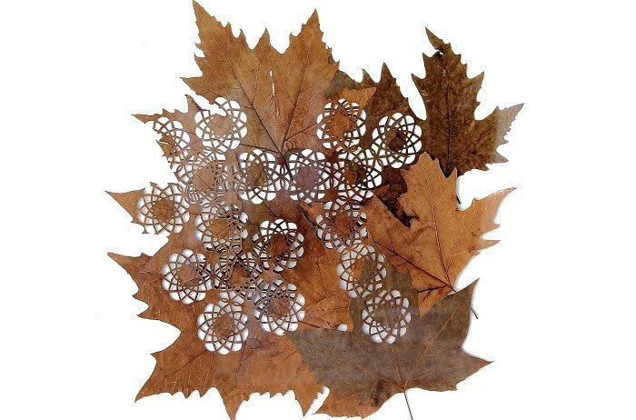 leafart-lcdesign18
