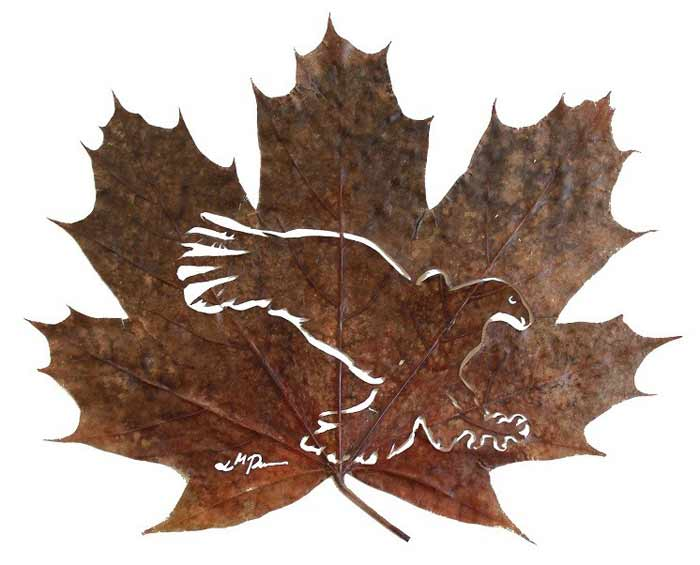 leafart-lcdesign3