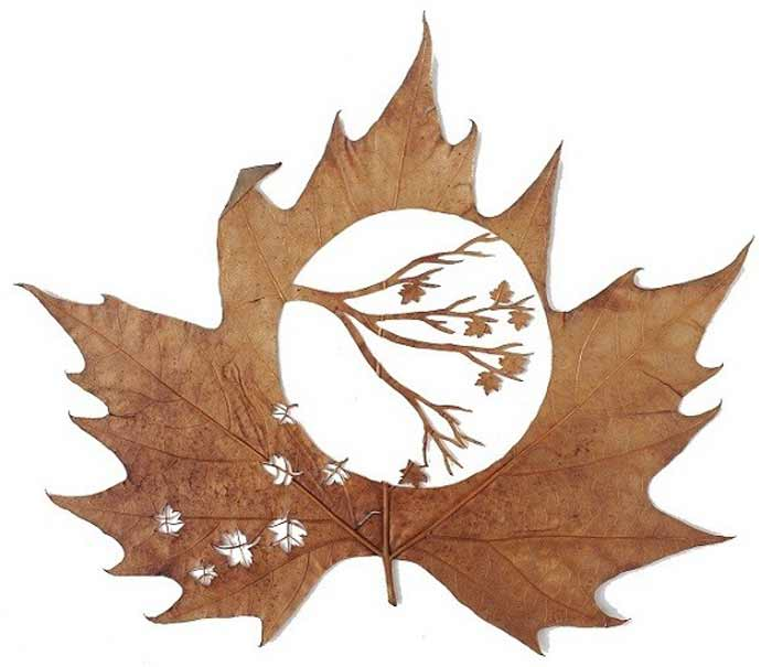 leafart-lcdesign8